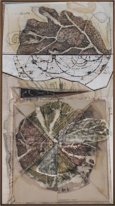 Jitish Kallat, 'Palindrome/ Anagram Painting'