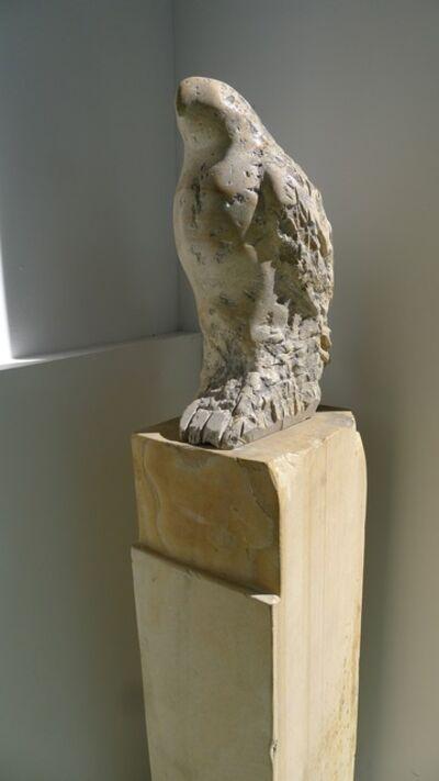 Jane Rosen, 'Hawk Owl', 2008