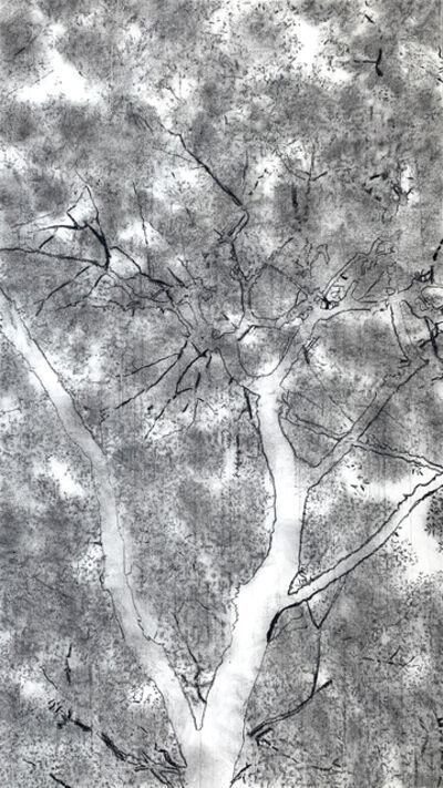 Jeffrey Blondes, '20-10D Bois de Mametz 06h33m00s', 2020