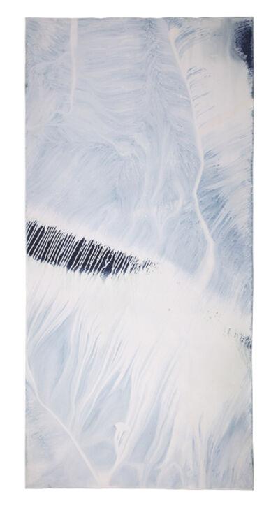 "Meghann Riepenhoff, 'Erasure #11 (Bainbridge Island, WA 12.13.18, ½"" Precipitation)', 2018"