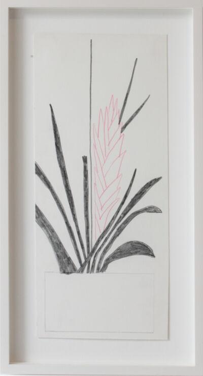 Jonas Wood, 'Pink flower', 2012