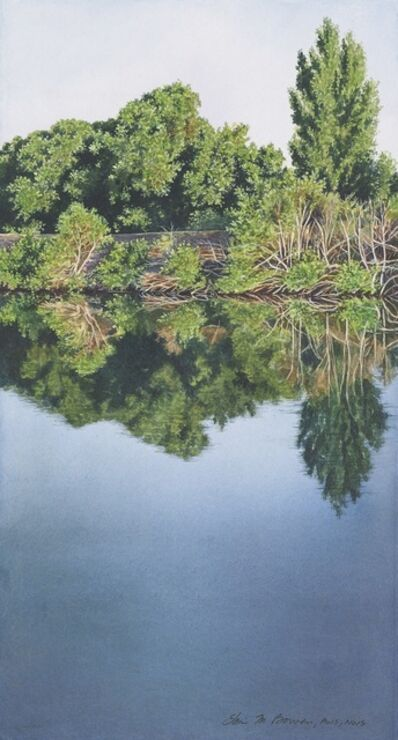 Elaine Bowers, 'Delta Mirror'