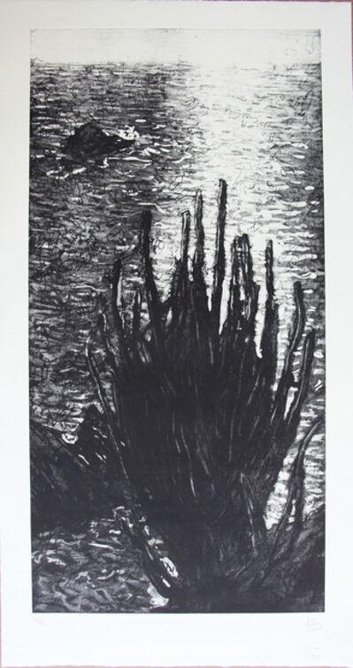 Fernando Aceves Humana, 'Sin titulo', 2004