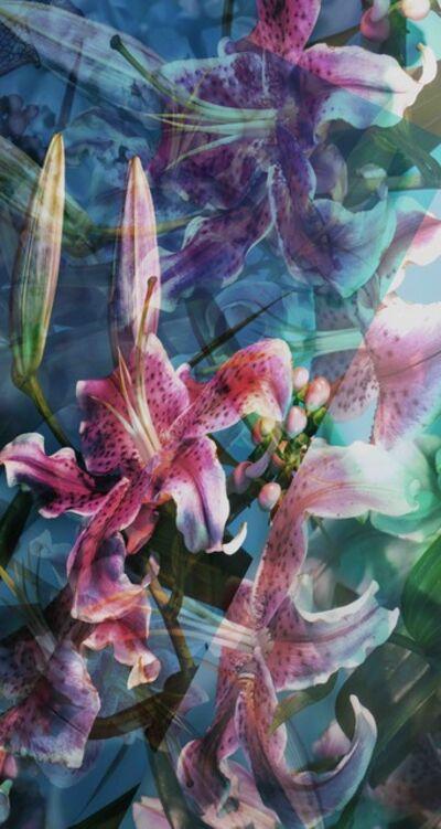 Fidan Bagirova, 'Dreamy lily', 2016