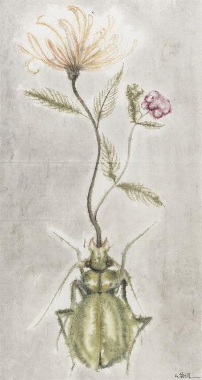 Shi Rongqiang, 'Winter-Insect, Summer-Herb No.1', 2015
