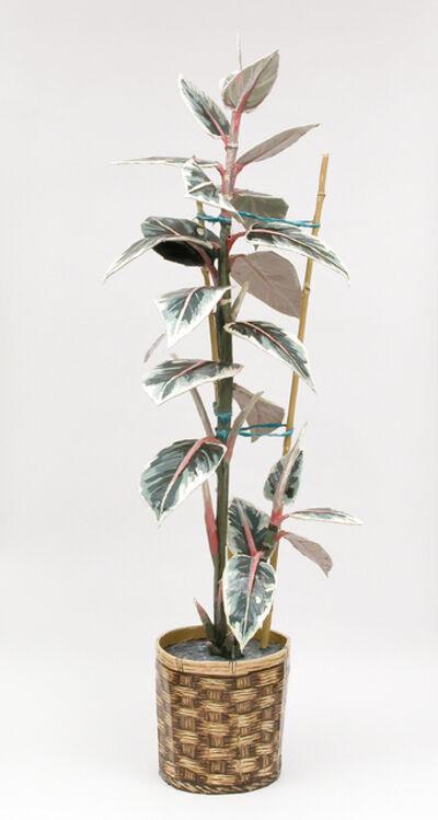 Jean Lowe, 'Rubber Plant', 2014
