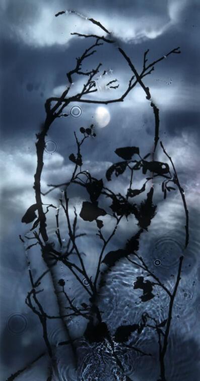 Susan Derges, 'Gibbous Moon', 2010