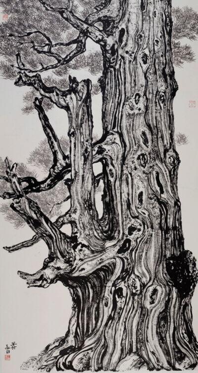 Wang Mansheng 王满晟, 'Old Tree 9 深山尋古木 九', 2014