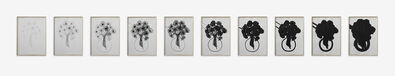 Analia Saban, 'Fade Out (Bouquet of Flowers, in Ten Steps) ', 2015