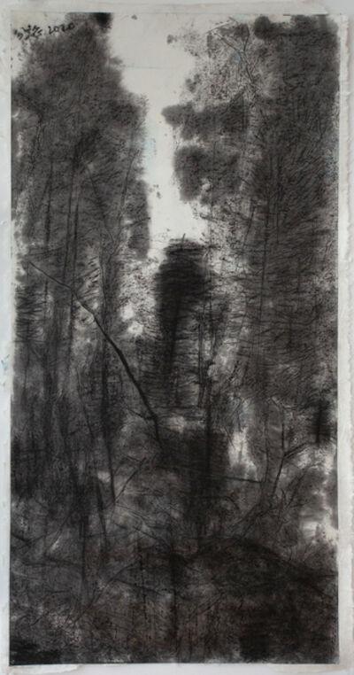 Wang Gongyi, 'Heze Shenhui', 2020