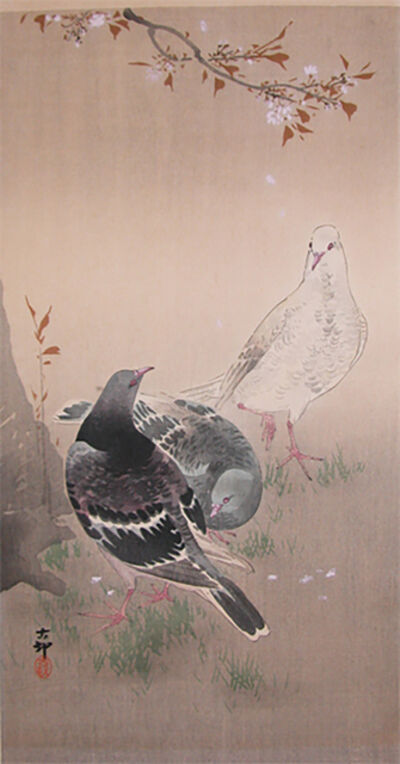 Ohara Koson, 'Pigeons and Cherry Blossoms', 1910