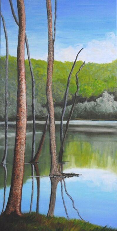 Linda Lynton, 'Sawkill Echo Lake [where the journey begins]  ', 2019