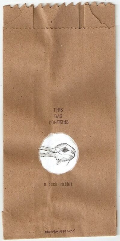 Rehaan Engineer, 'this bag contains a duck - rabbit', 2013