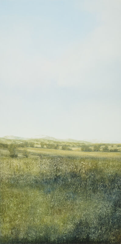 Peter Brooke, 'Augusta Steppe', 2018