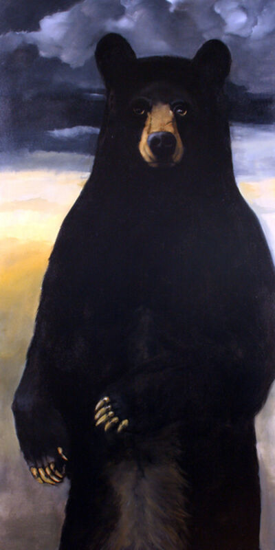 Robert McCauley, 'The Great North American Black Bear Census Project #6', 2019