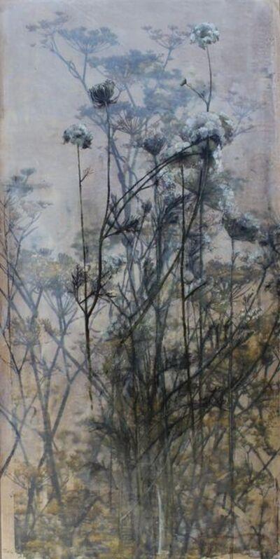 Diana Majumdar, 'Queen Anne Lace', 2017