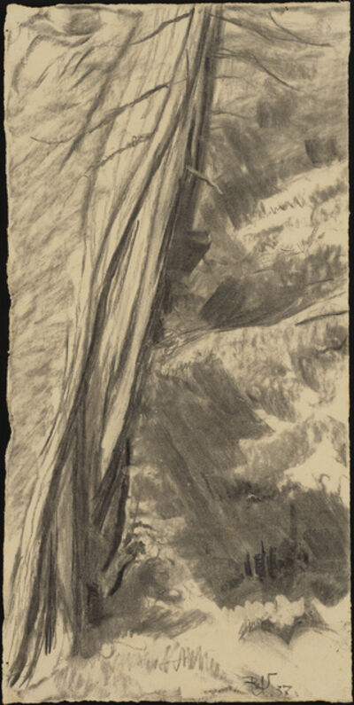 Rudolf Urech-Seon, 'Waldweg 1', 1937