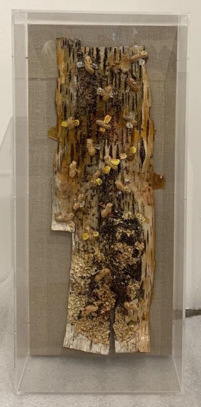 Judi Harvest, 'Bee Nuts', 2011