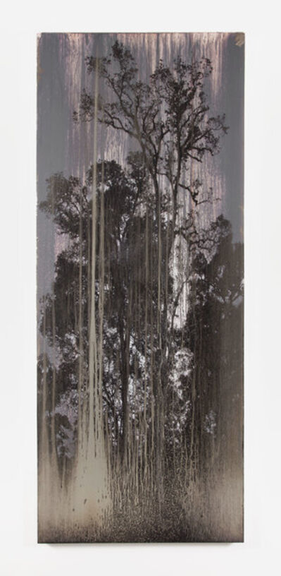 Matthew Brandt, 'AgXB751B', 2019