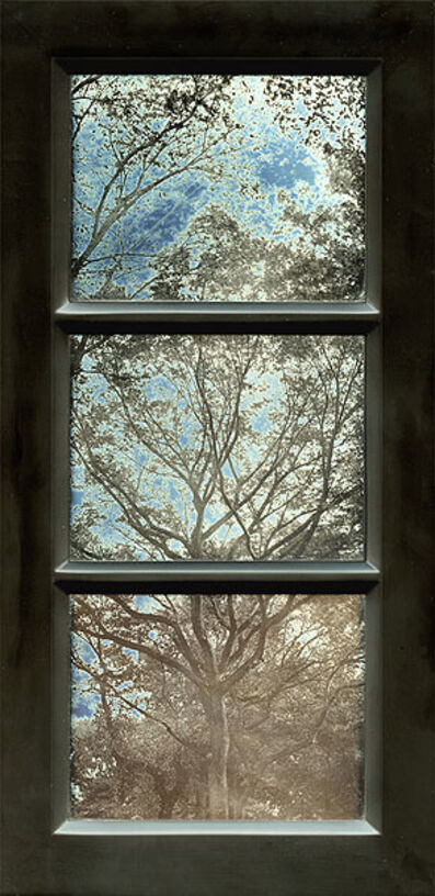 Jerry Spagnoli, 'Tree Study (Tryptic)', 2004/2004
