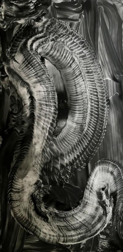 Roberto Munguia, 'Slinky', 2018
