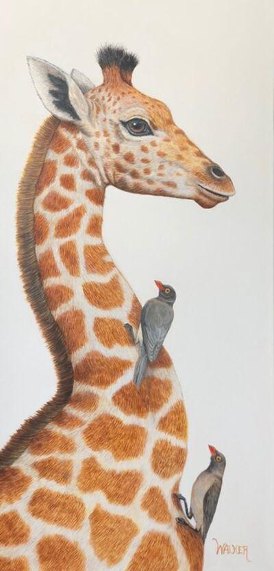 Laurie Walker, 'Giraffe ', 2018