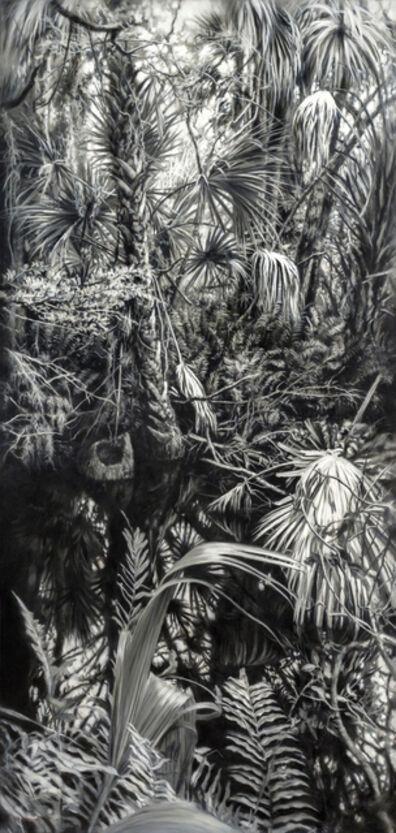 Jaco van Schalkwyk, 'A Little Chaos', 2019