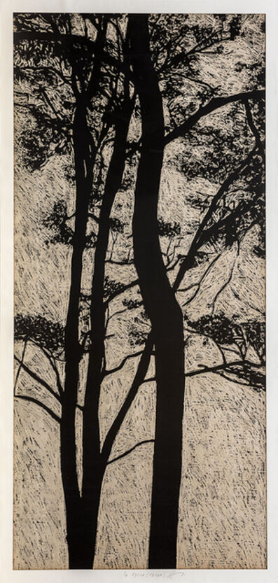 Jan Hendrix, 'Silvia X (Taller)', 370503