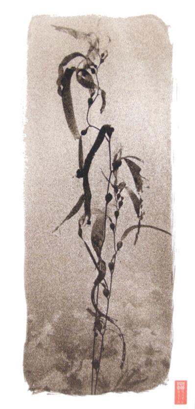 Ryuijie, 'Kelp ', 2008