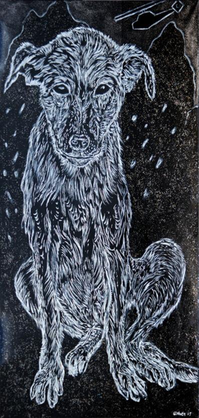George Gittoes, 'Tora Bora Puppy'