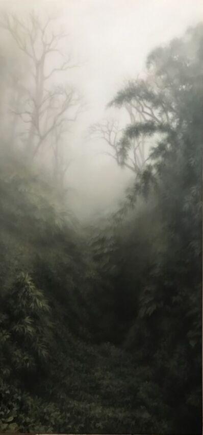 Jaco van Schalkwyk, 'This place I know', 2017
