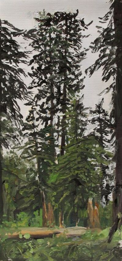 Kevin Muente, 'Rainforest, Quinault Olympic National Park'