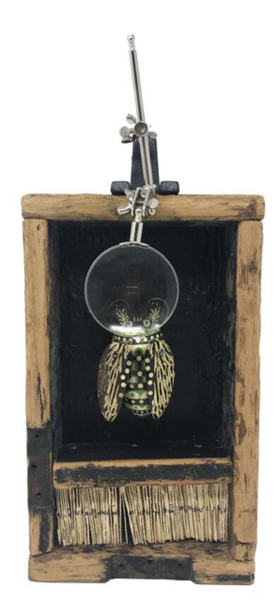 Robin Howard, 'Bug Box II', 2020