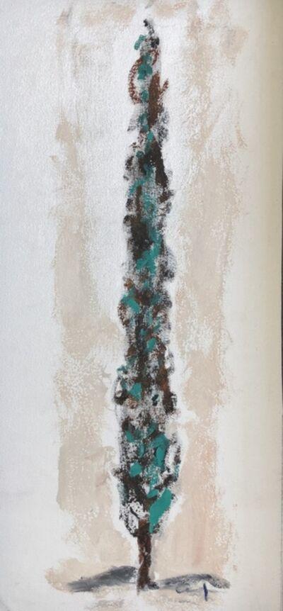 Amaya Salazar, 'Pine Tree', 2019