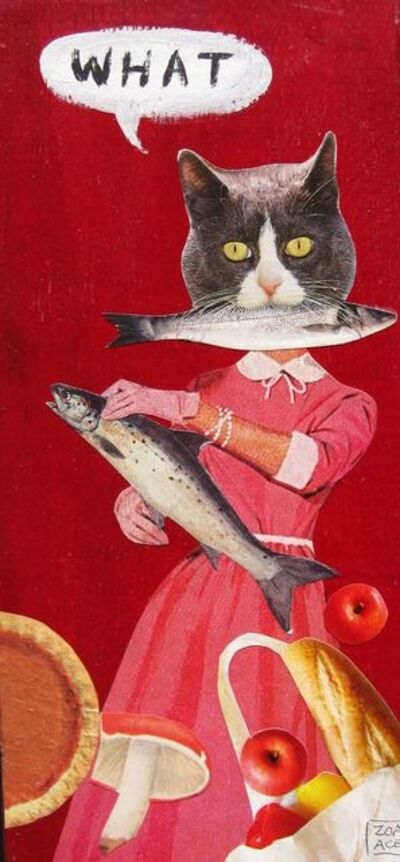 Zoa Ace, 'WHAT (Domestic Cat)', 2020