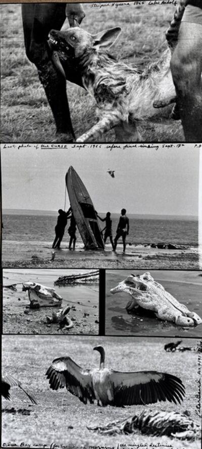 Peter Beard, 'Last Photo of 'The Curse', Alia Bay Sept', 1966
