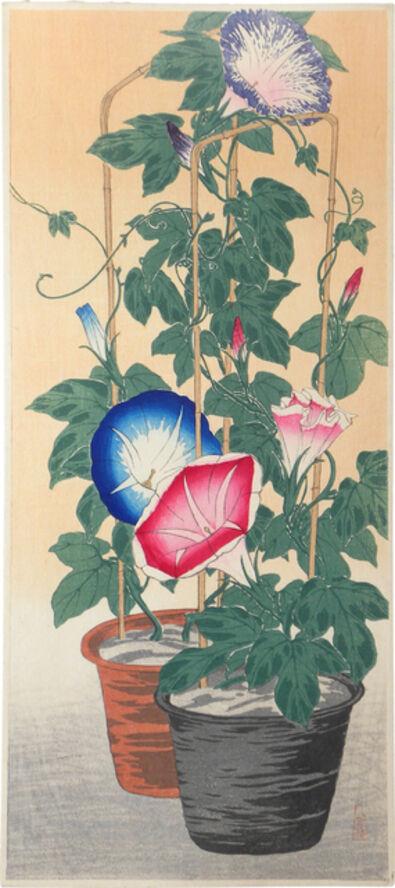 Hiroaki Takahashi (Shotei), 'Morning Glories (Yugao)', ca. 1924-27