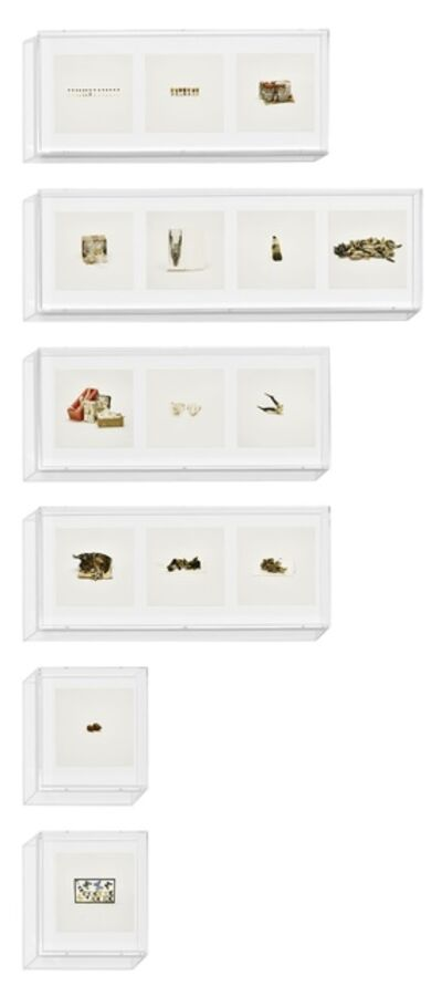 Taryn Simon, 'Animal Corpses (Prohibited), Animal Parts (Prohibited), Animal Skeletons (Prohibited), Animal Specimens (Prohibited), Butterflies (Prohibited), Snails (Prohibited), ', 2010