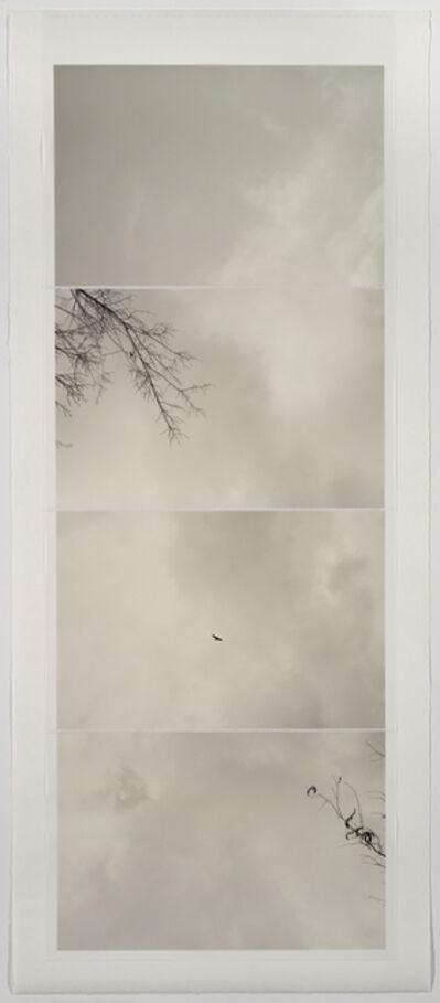 Marie Navarre, 'gravity of memory', 2016