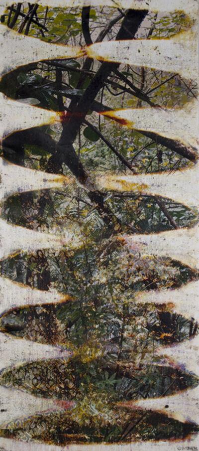 Matthew Brandt, 'Wai'anae 89361', 2015