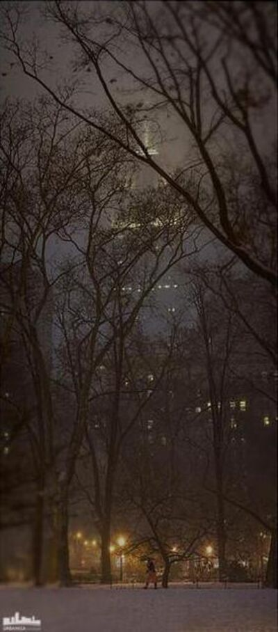 Den Marino, 'NYC Empire in Winter'