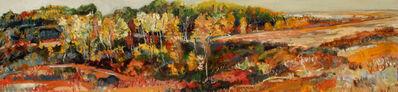 David Alexander, 'Beaver Creek to Flats', 2003