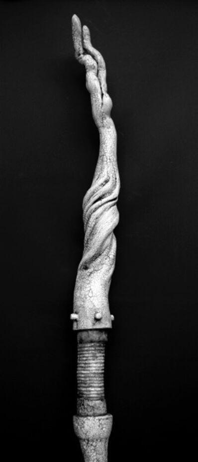 Charles Ramsburg, 'Pathing Stick #29', 2016