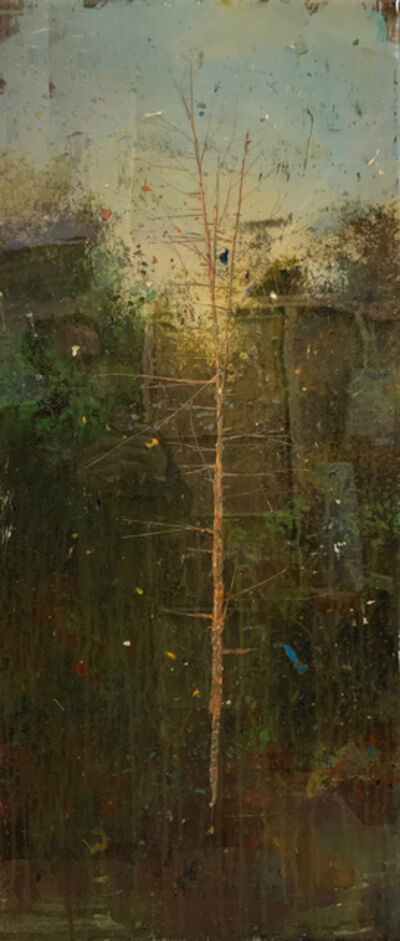 Peter Hoffer, 'Birch'