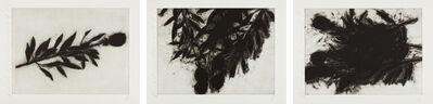 Donald Sultan, 'Black Roses (October); Black Roses (November); and Black Roses (December)', 1989