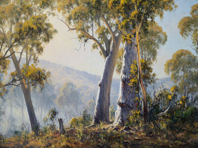 Ted Lewis, 'Summer Hill Gums', 2020