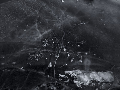 Xie Hong Dong, 'Dark Glass 暗境', 2012