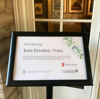 Kate Breakey: Trees, at Tucson Botanical Gardens, installation view