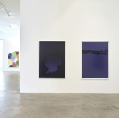 The Seven Year Itch, installation view