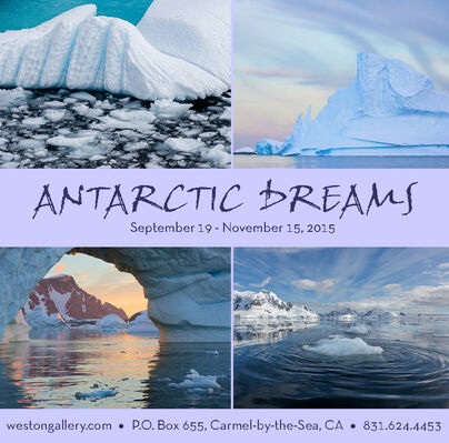 Antarctic Dreams by William Neill, installation view